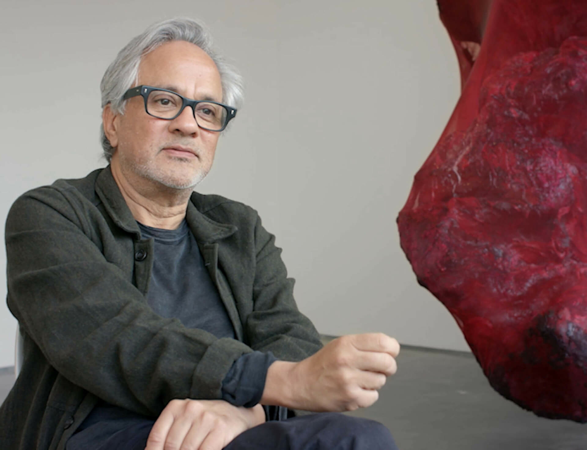 Anish kapoor video