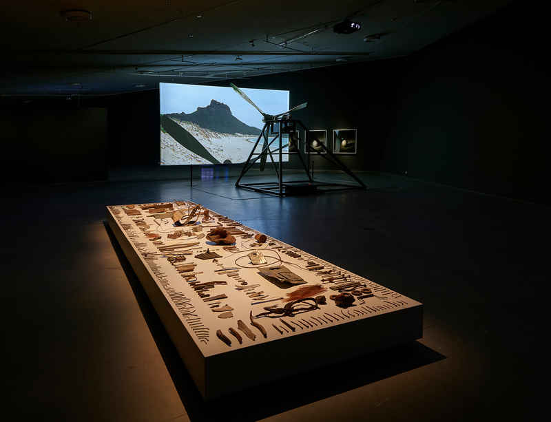 Broomberg & Chanarin present installation 'Dodo' in a group show at Amsterdam's Eye Filmmuseum