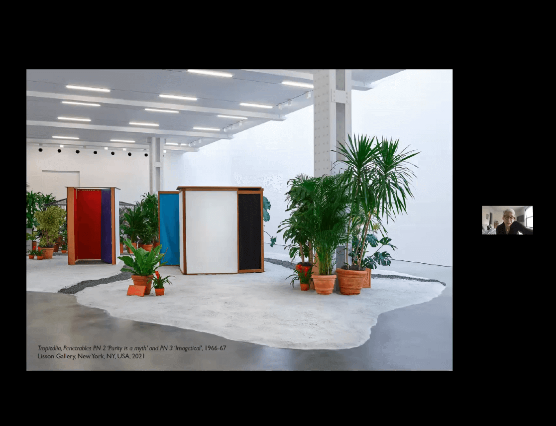 Watch now: A discussion on the work of Hélio Oiticica