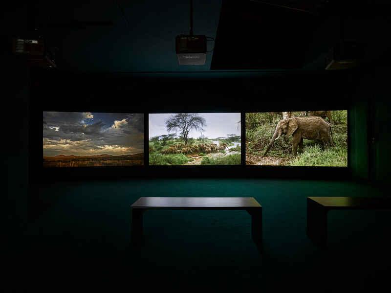 John Akomfrah: The Unintended Beauty of Disaster