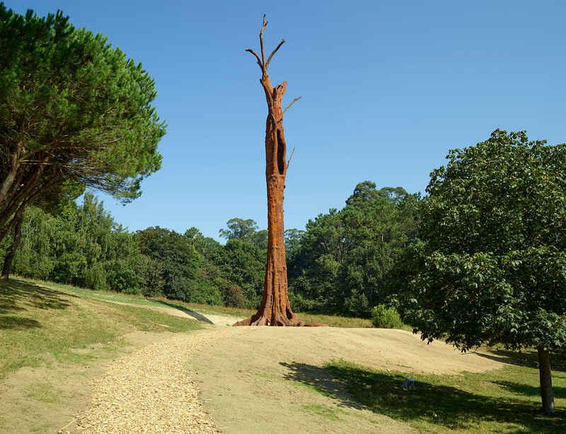 Ai Weiwei's major solo presentation opens at Serralves Museum, Porto