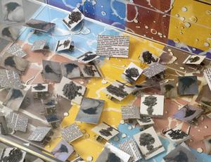 Thumbnail_a_l090007_2_webedit