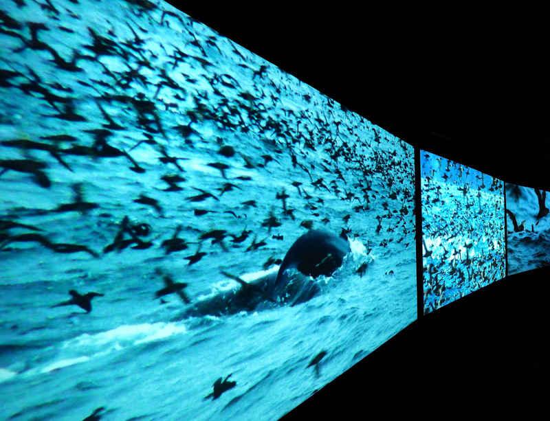 Arnolfini to host UK premier of John Akomfrah's 'Vertigo Sea'