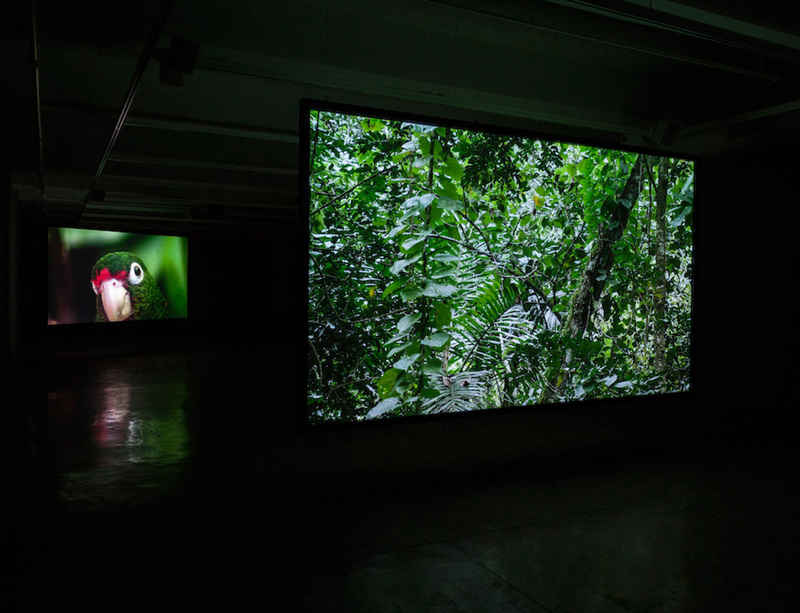Alt art space presents two video installations by Allora & Calzadilla