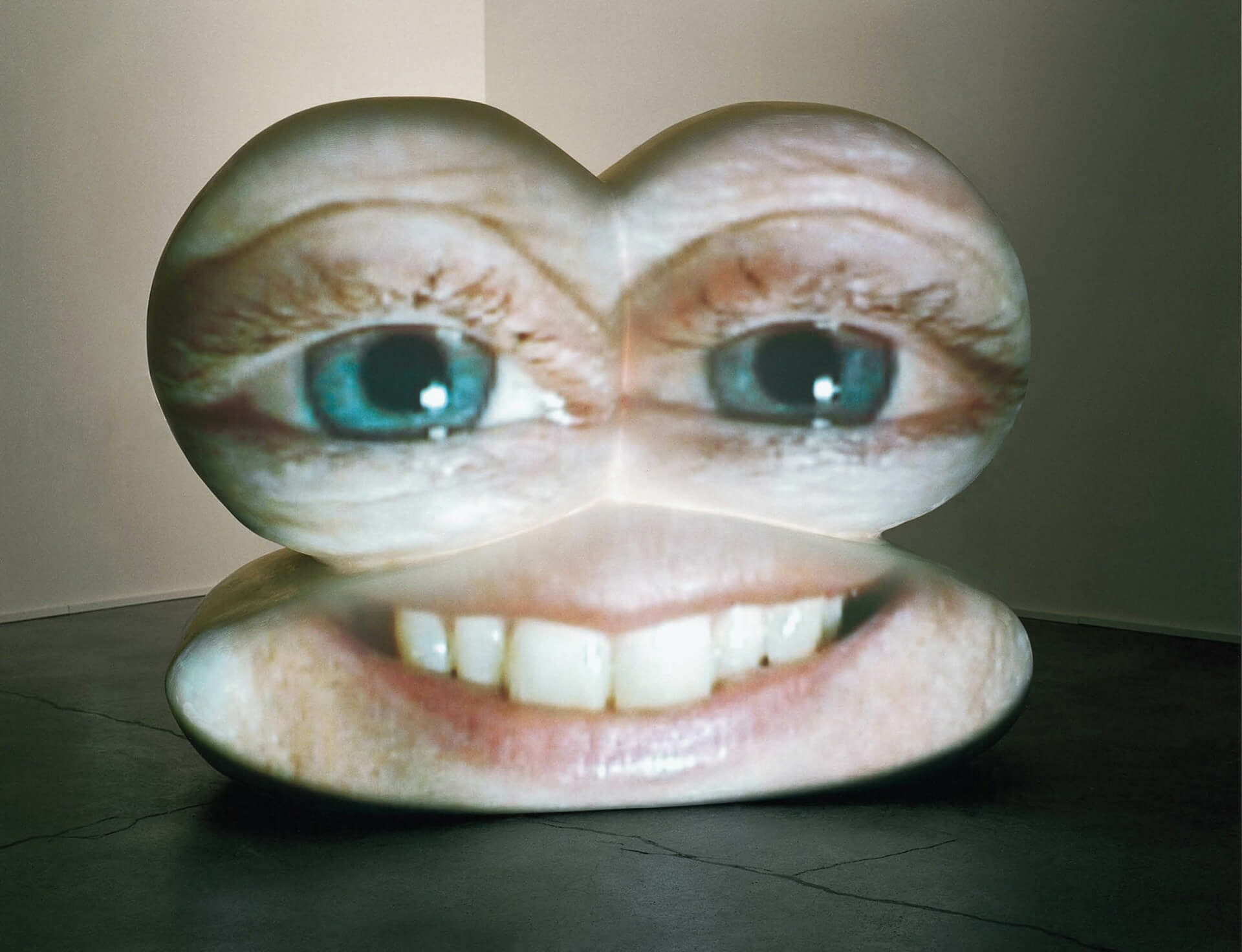Tony_oursler__magasin_iii_