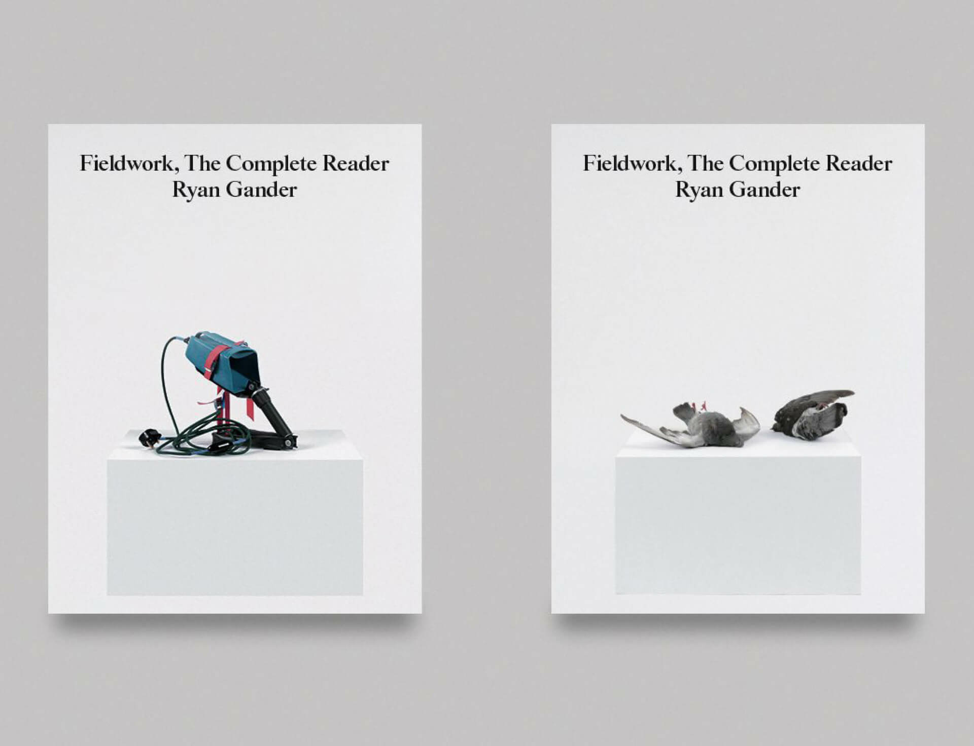 Fieldwork  the complete reader ii