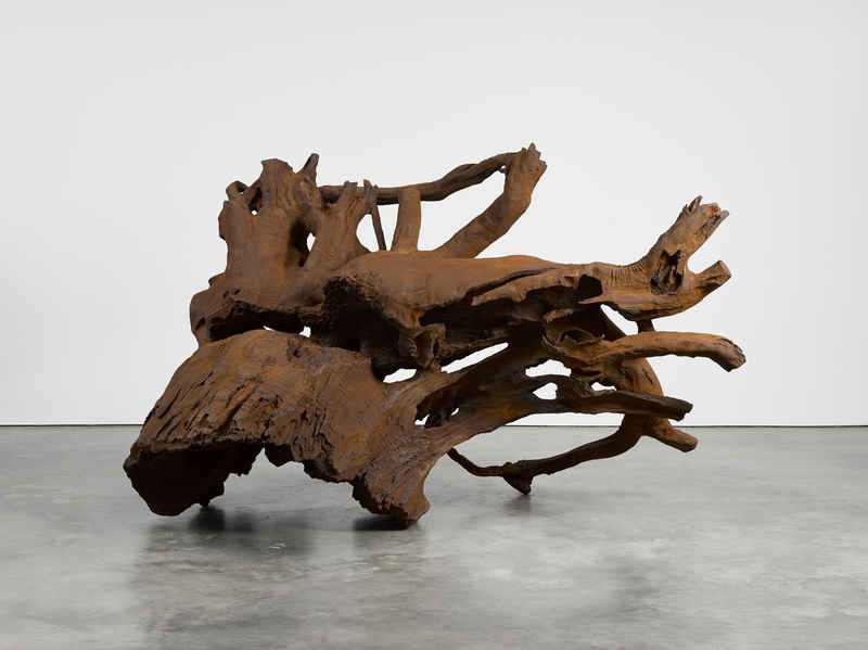 Ai Weiwei: Roots and Branches